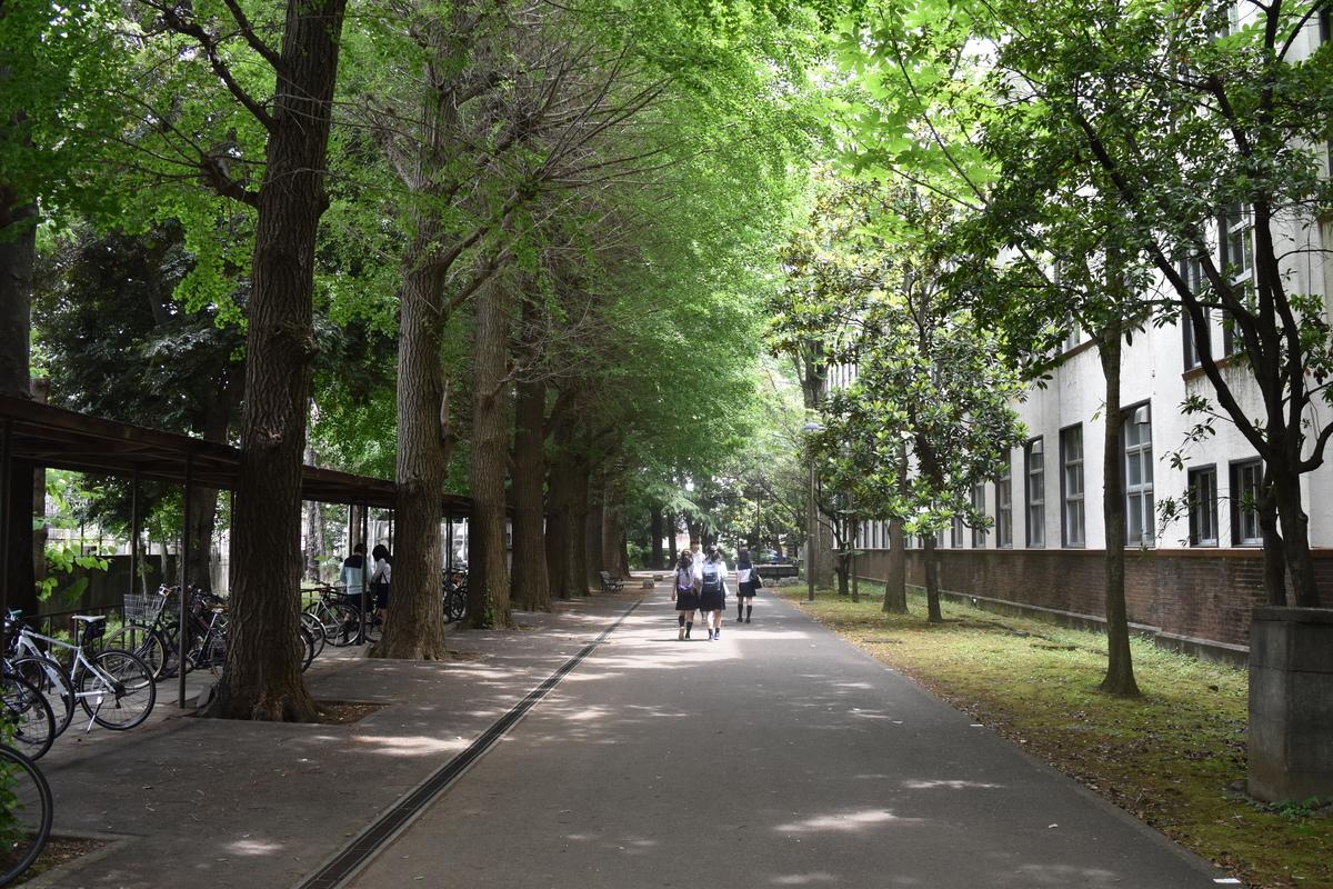 高校 附属 学芸 東京 大学